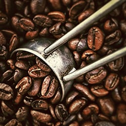 Coffee beans and measuring scoop
