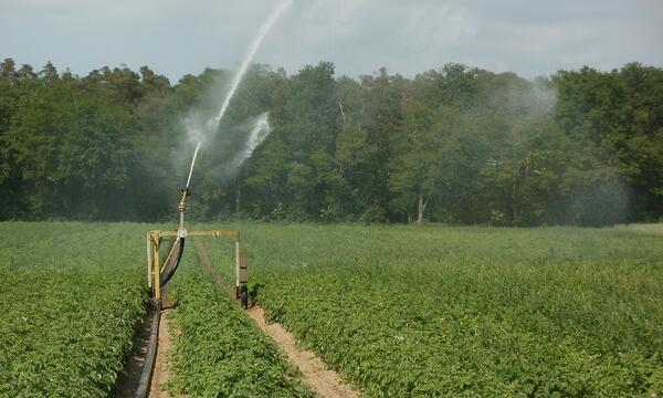 Irrigation-709358-edited