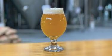 Beer-Wheat-Brewing-Horiz-Hanna