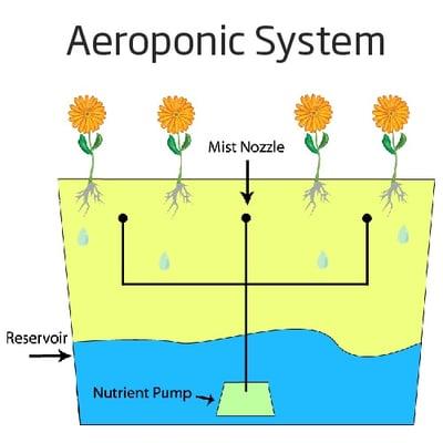 AeroponicSystem