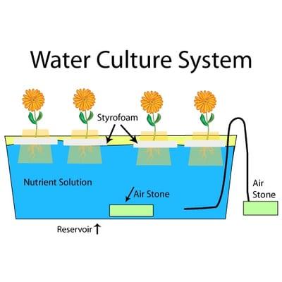 WasserKulturSystem