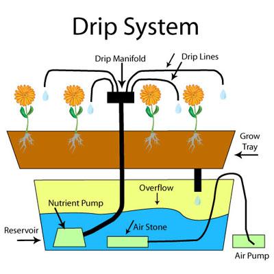 DripSystem
