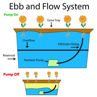 EbbandFlowSystem