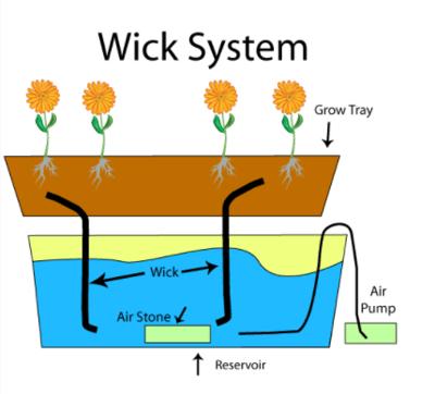 wick-1