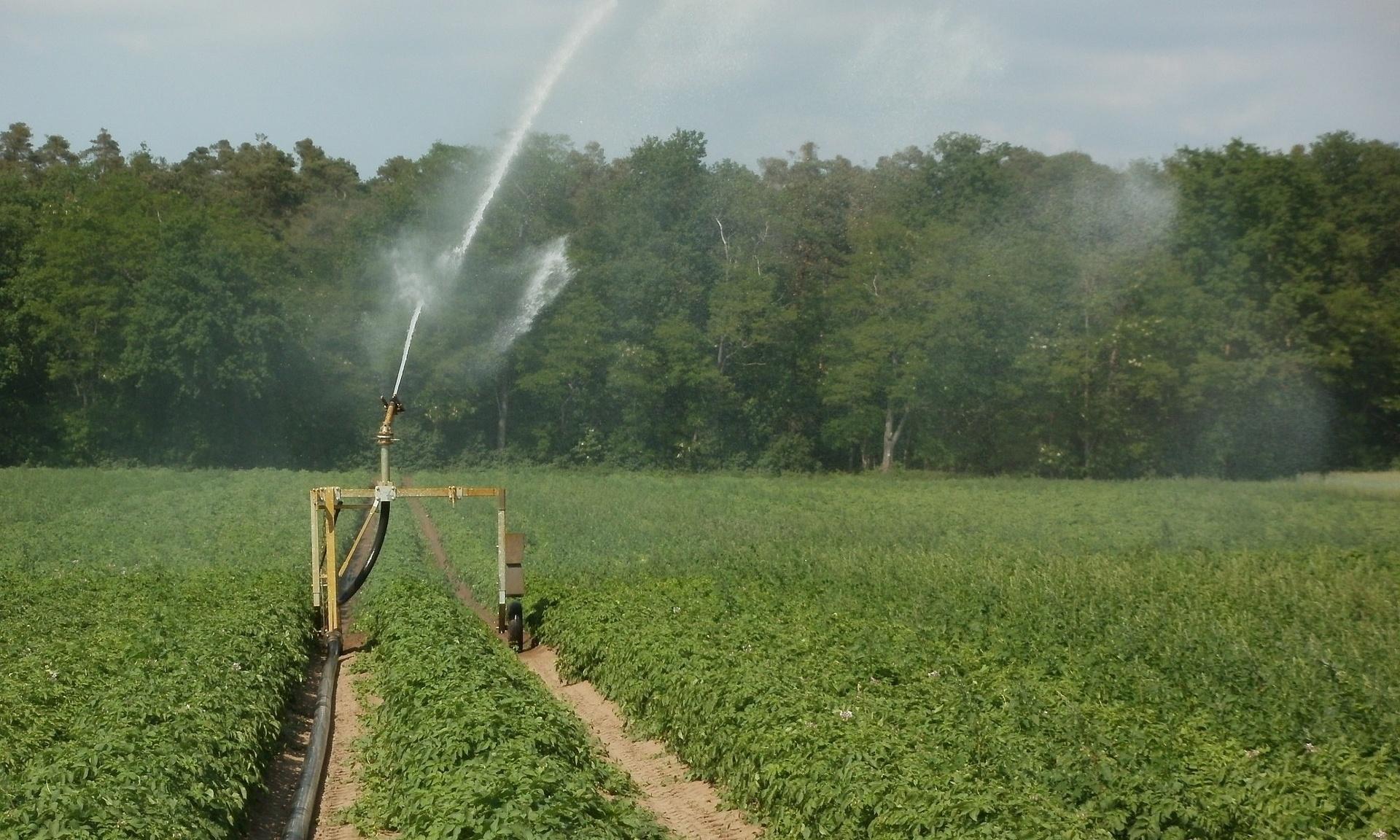 Irrigation-709358-edited.jpg