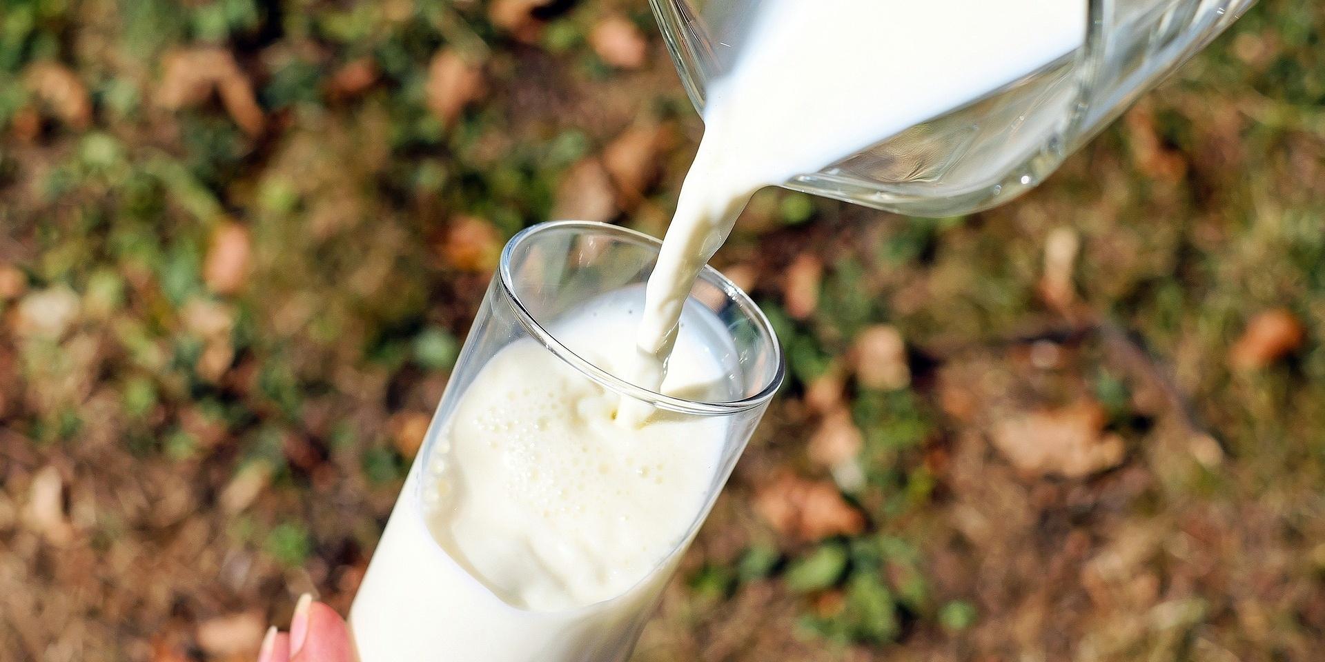 Milk-882576-edited.jpg